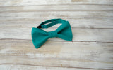 (50-270) Lagoon Medium Teal Bow Tie and/or Suspenders - Mr. Bow Tie