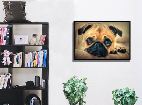 LovePug Premium Gallery Wrap