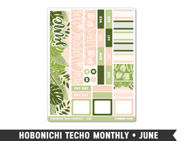 Hobonichi Techo A6 • June • Monthly Spread Planner Stickers