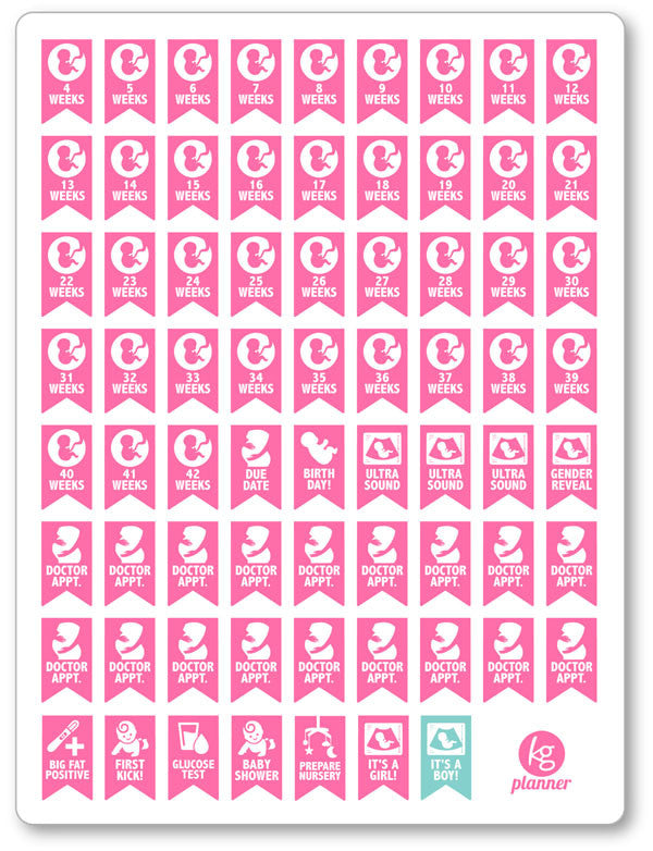 Pregnancy Set PDF PRINTABLE Planner Stickers - Planner Penny