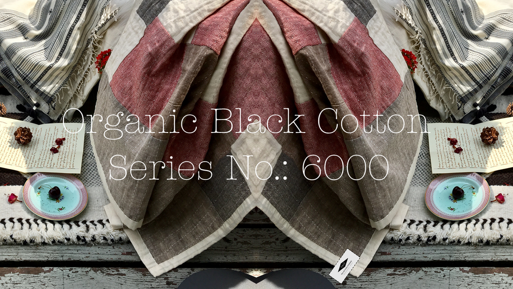 Trace back: Series no 6000 organic Black Cotton quilts