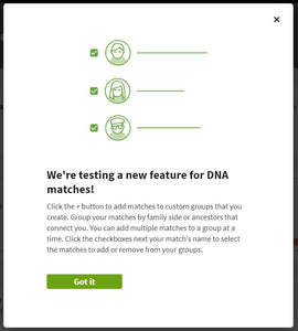 Ancestry DNA Shared Matches Update
