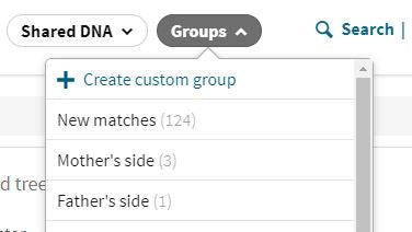AncestryDNA - Search relationship by side of the family