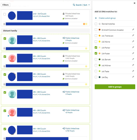 Ancestry DNA Multiple Shared Matches