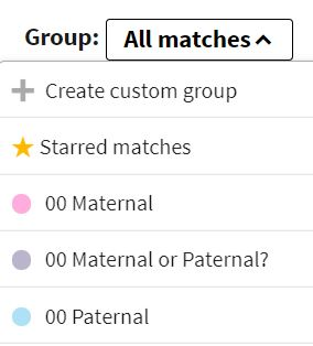 Ancestry DNA Groups Maternal Paternal