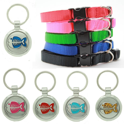Blue Puppy Collar & Extra Small Fish Pet Tag