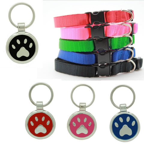 Fluro Pink Puppy Collar & Extra Small Fish Pet Tag