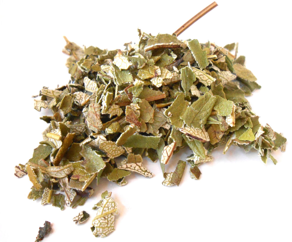 Yerba Santa, Ethically Wild-Harvested - Holy Herb
