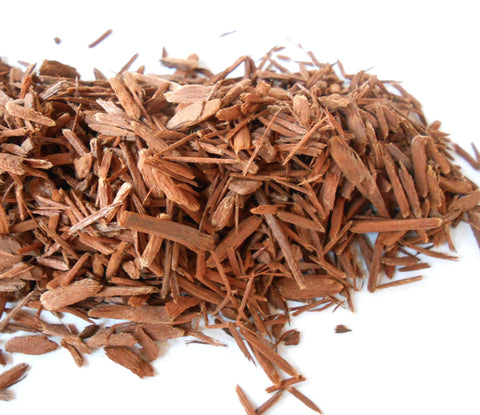 Yohimbe Bark, Ethically Wild-Harvested - CynCraft