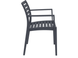 Artemis Armchair - Side - Anthracite