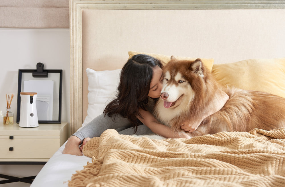 Dogs Breeds With Separation Anxiety | Online Guide | Chapter
