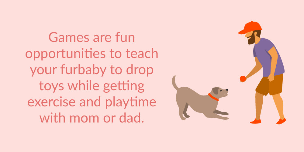 playtime with puppy