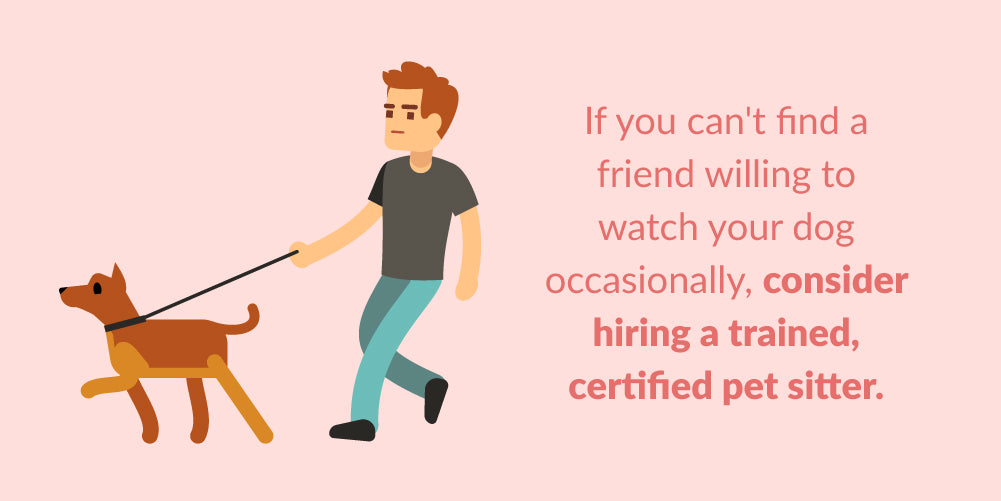 consider hiring a trained, certified pet sitter