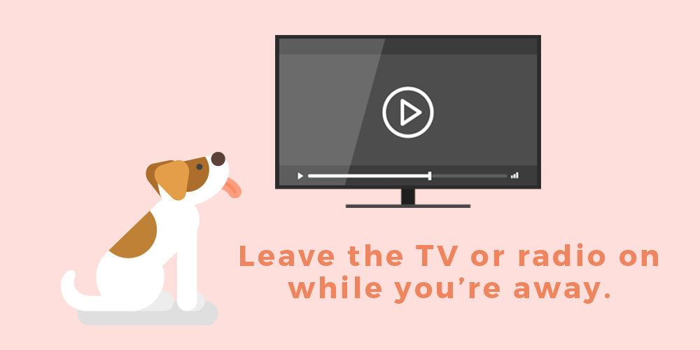 putting the tv on for your dog helps him feel less lonely