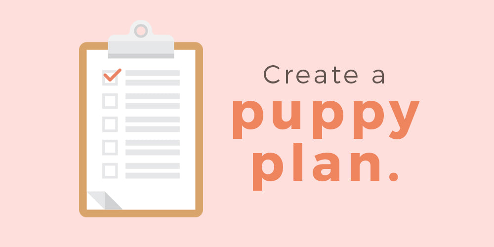 create a puppy plan