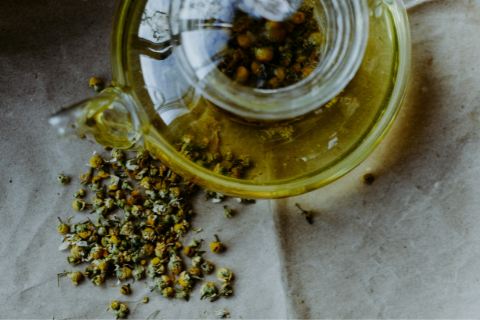 Chamomile is a natural herb that can calm nerves and stress in your pup