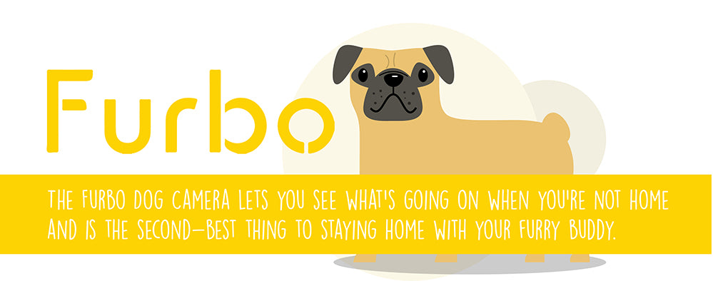 furbo dog camera let's you see what's going on when you're not at home