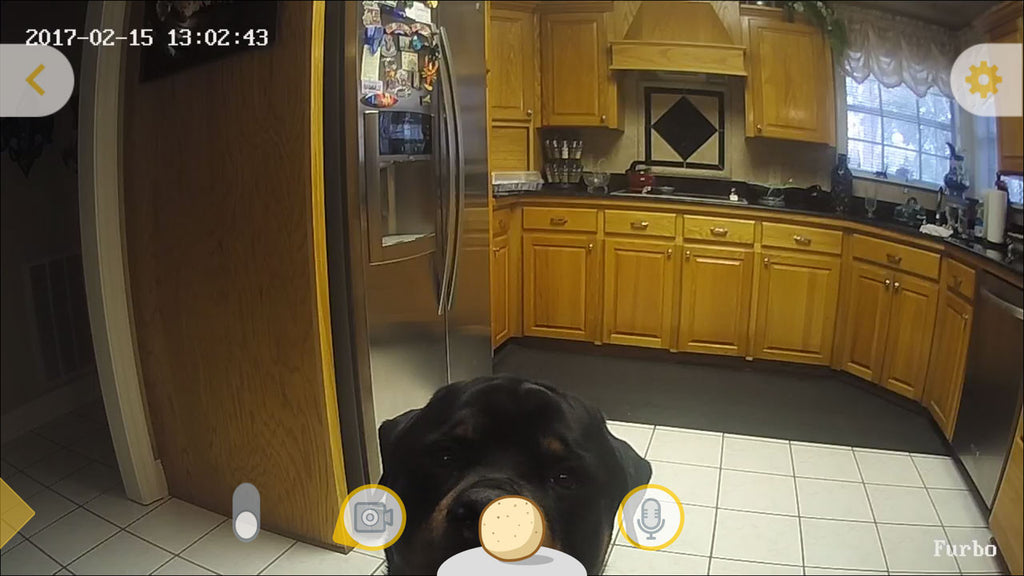 furbo-camera-view