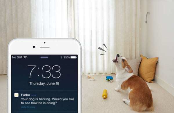 app to make dog stop barking