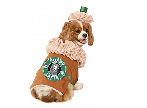 dog-costume-coffee