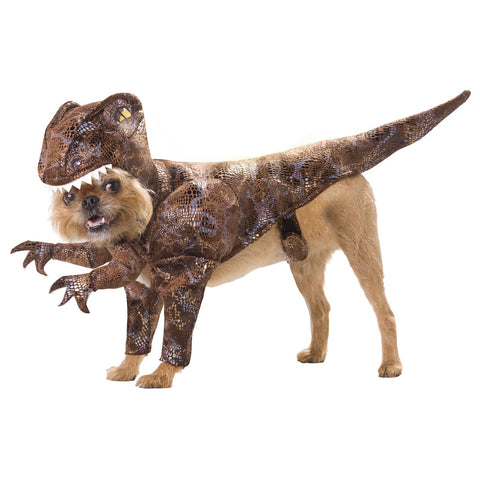 dog-costume-dinosaur