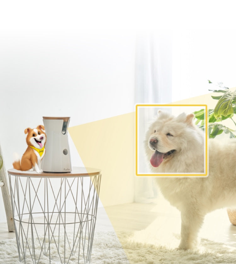 Furbo Dog Nanny uses AI technology to detect motions and sounds