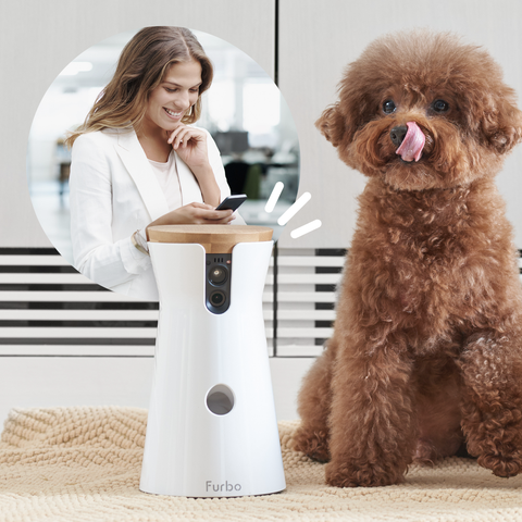 two way communication social pet camera