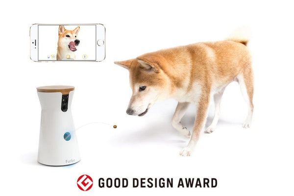 shiba-furbo-good-design-award