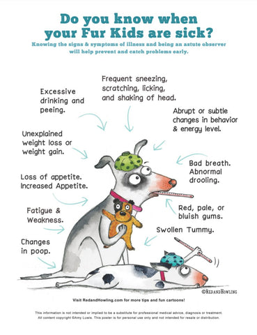 FREE Poster Download: Do You Know When Your Fur Kids Are Sick? - Red and Howling