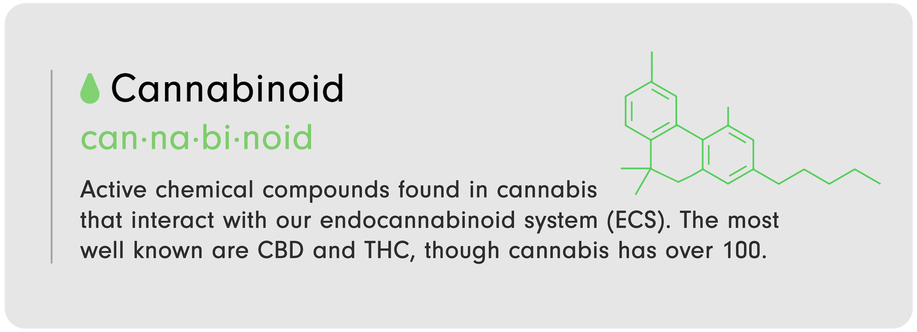 """C-D 101 infographic by LEVO that reads, """"Cannabinoid: Active chemical compounds found in c----bis that interact with our endocannabinoid system (ECS). The most well known are C-D and T-C, though c----bis has over 100."""""""