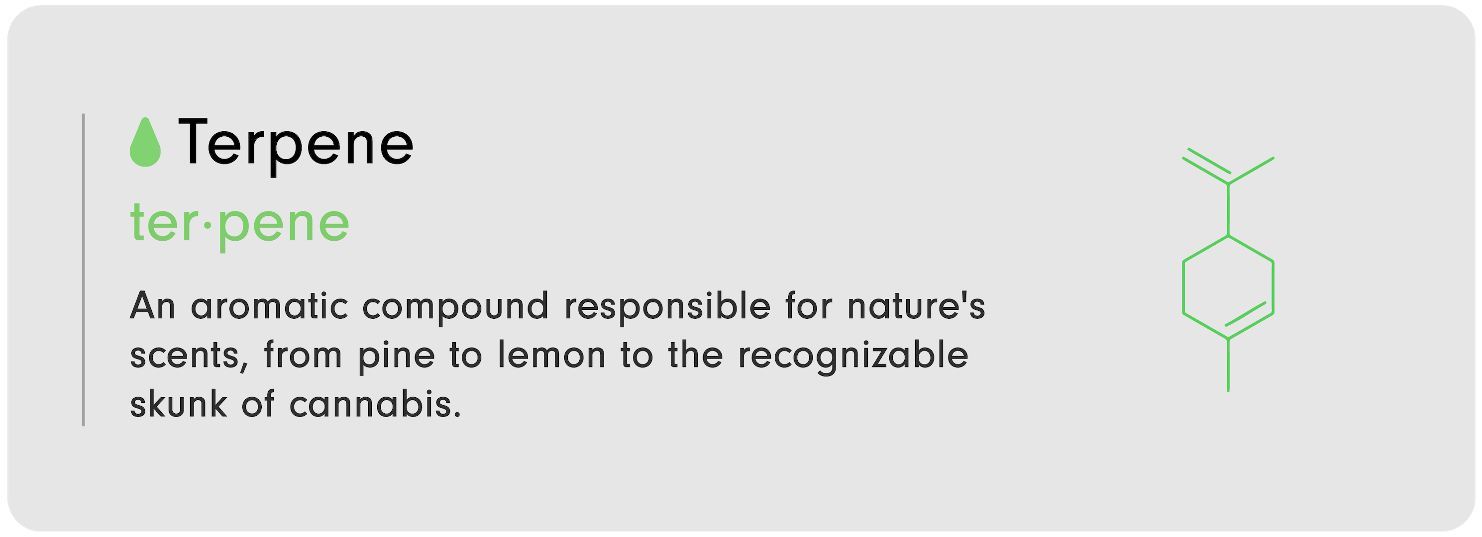 """C-D 101 infographic by LEVO that reads, """"Terpene: An aromatic compound responsible for nature's scents, from pine to lemon to the recognizable skunk of c----bis."""""""