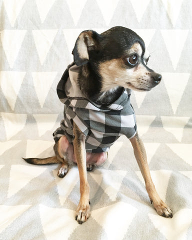 chihuahua hoodie dog clothes