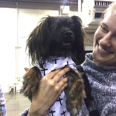 socal pet expo 2017 boss pup dog clothes