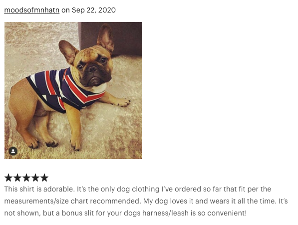dog clothes review