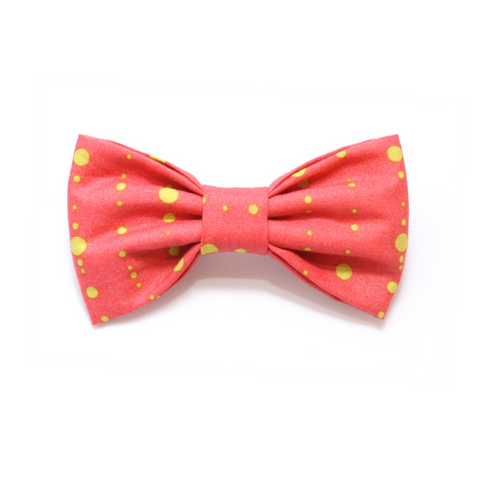 dog bow tie coral