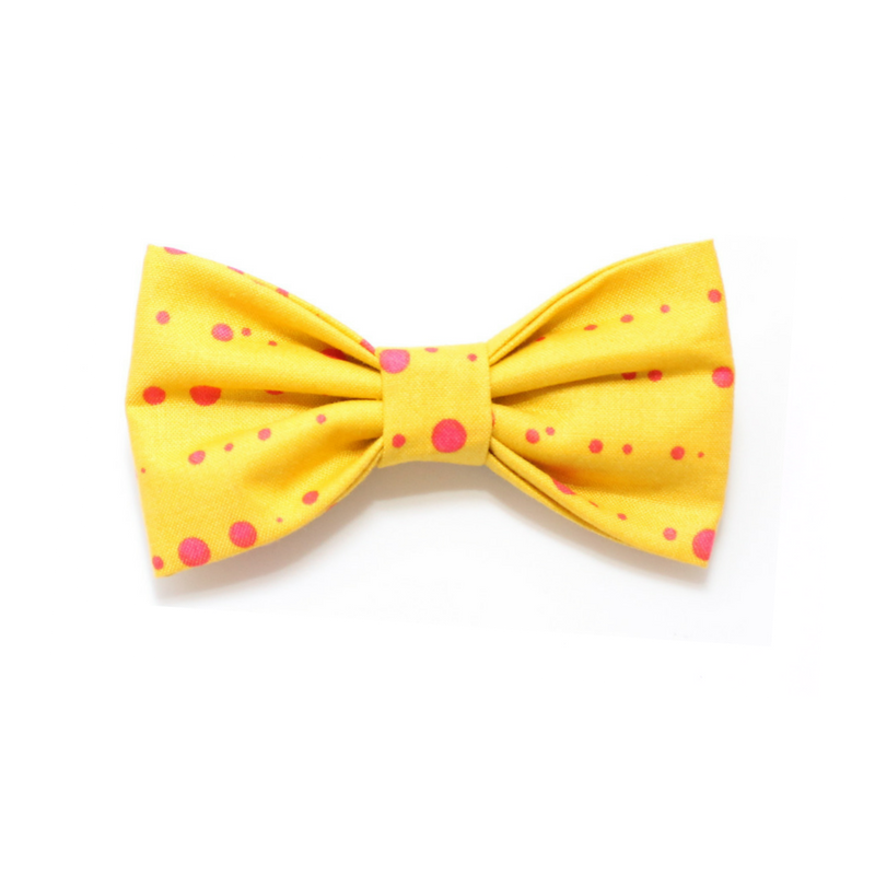 dog bow tie yellow pink