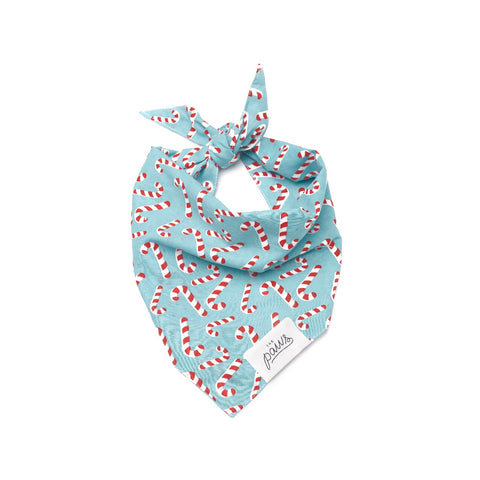 The Paws Dog Bandana - Holiday Candy Blue Land