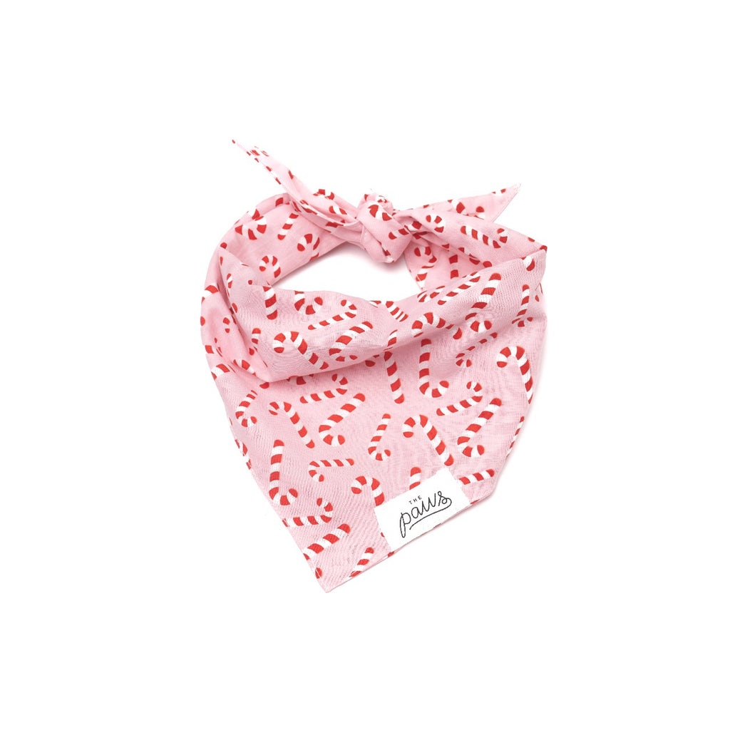 The Paws Dog Bandana - Holiday Candyland Pink