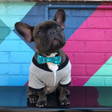 Bosspup Dog Bow Tie - Baby Blue - BOSSPUP