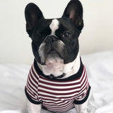 Homerun Pup Shirt - Crimson Stripe