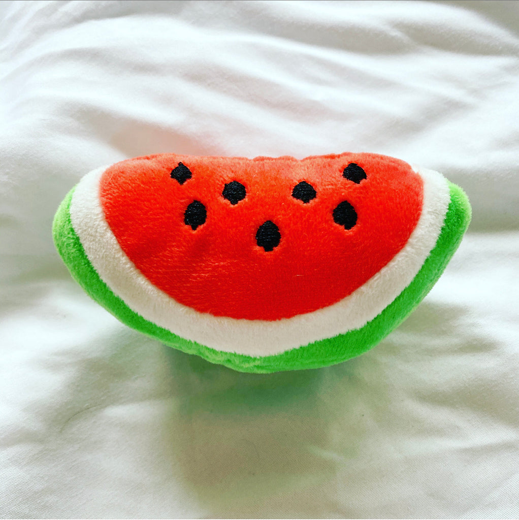 Watermelon Sugar Slice Dog Toy