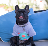 Colorblock Pup Shirt - Grey + Polka Dot - BOSSPUP