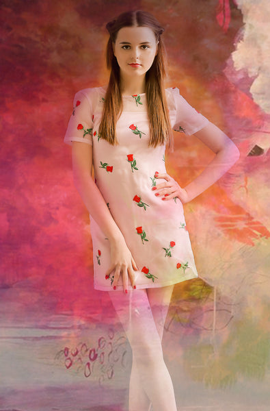 Rose transparent dress