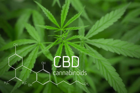 photo of cbd flowers on green leave background with chemical formula