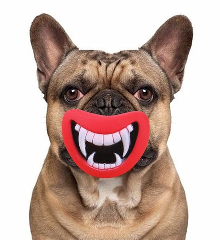 Dog Mouth Chew Toy