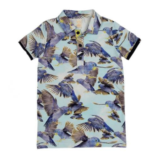 WILD - Polo Bluebirds