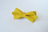Maize yellow Bow tie