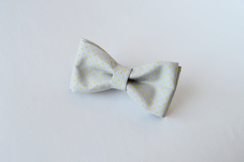Dot Grey Bow tie