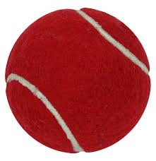 Gray Nicolls Felt Cricket style tennis training ball