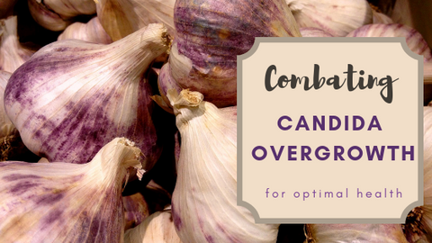 What is Candida Overgrowth?